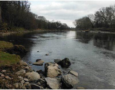 Caermawr river wye