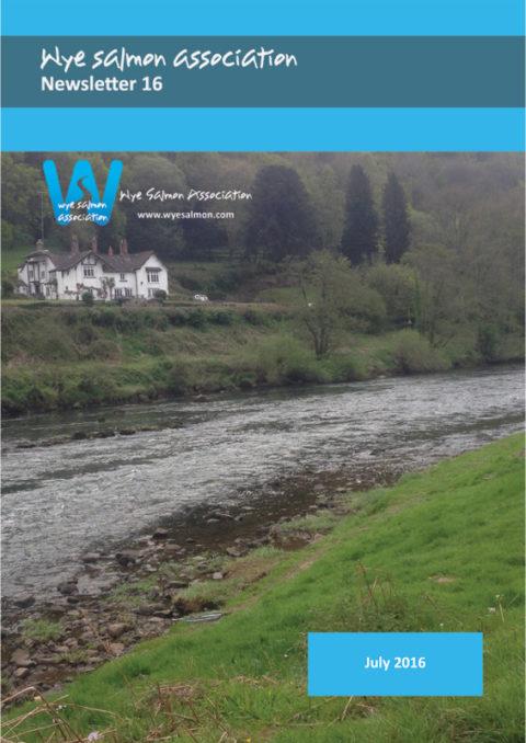 Wye Salmon Association Newsletter 16